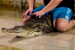 2012_01_28_-_Ekaterinburg_-_Crocodile_farm_18.JPG